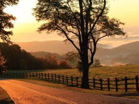 A golden sunrise morning in Grayson Highlands State Park